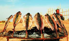 文明密碼:巴楚烤魚