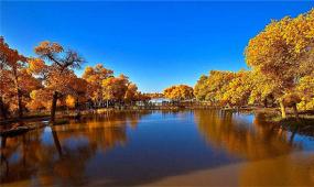 新疆塔里木河第19次生態輸水 水量超5億立方米